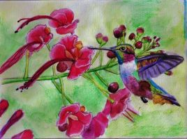 Humming Bird and Flowers (Finished) by LunaArcanum18