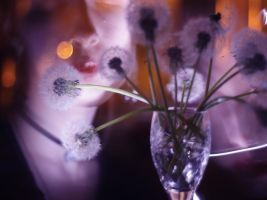nighttime dandelion wine 3 by miss-Alienation