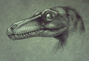 Saurornithoides mongoliensis by MALvit