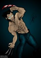 Wolverine by Arzeno colored by mysoul89