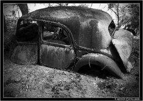 Cars vs. nature 12 by slipandslidesuicide