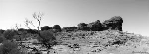 Kings Canyon by partoftime