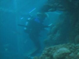 Scuba Diver 01 by LithiumStock