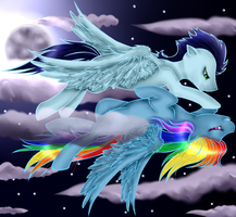 Rainbow Dash and Soarin by AngieMP