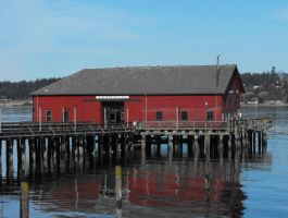 Coupeville: The Wharf by Photos-By-Michelle