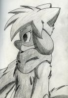 Shell / Shelley The Riolu On Paper by Zander-The-Artist