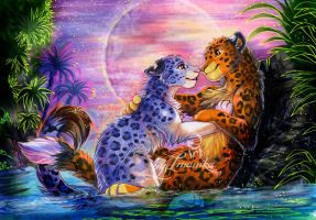 Ketty HB by Imanika