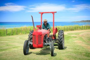 RGB + Pere Mowing the Lawns by dynax700si