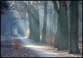 The path is cleared again by jchanders