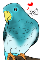 My Parrot Fursona .:Official Reference:. by Horse-Emotion