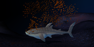 MMD Newcomer Grey Whale Shark + DL by Valforwing