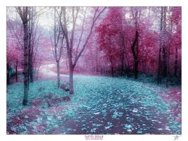 PASTEL DREAM by JTphoto