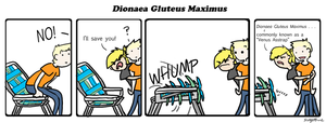 Dionaea Gluteus Maximus by 13-Oh-Three