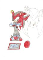 Zero The Hedgehog by KingShadow20