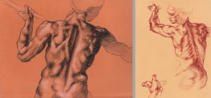 Class study on DaVinci sketches of anatomy by Pisces-in-Bloom