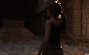 Rise of the Tomb Raider by SirDeBasik