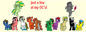 Just a few of my OC's by bloostormbrony