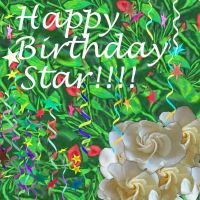 Happy Birthday Star!!!!! by Hillbillygirl