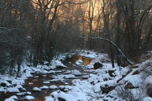 Morning - S Boulder Creek by yenom