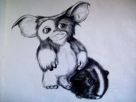 Gizmo by boy140495