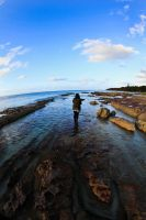 Jervis bay. by andthecowsgobaa