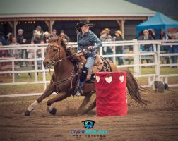 Ridiculously Photogenic Barrel Racer by Crystalsm