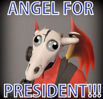 Presidential Campaign by Nylten