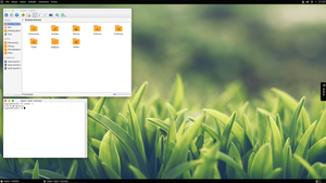 Mac OS? Gnome 2? No, just KDE by PokerLegion