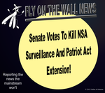 Goodbye NSA Spying and Patriot Act! by IAmTheUnison