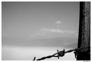 Fencing the Sky by nmajali