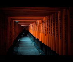 Torii at Fushimi Inari Shrine by burningmonk