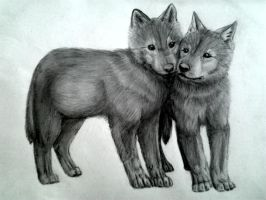 Cubs by LauriieT