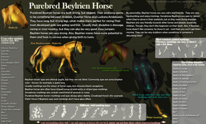 Beylrien Horse - updated by Arya-Susy