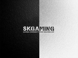 SK-Gaming BnW Wall by eMCepa