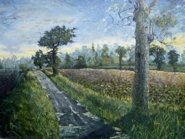 the road to Carlton Forehoe by rodulfo