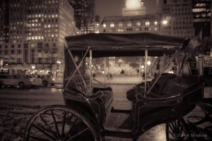 Carriage Ride bw by Tomoji-ized