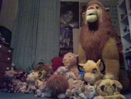 Lion King Collection - Updated by JellyPaws