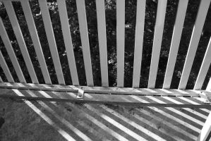 shadow of lines by Janerd
