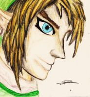 Link by scetchfreak-77