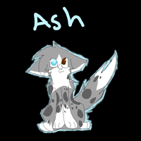 Ash for SunsetVanilla by X-CoyoteFeathers-X