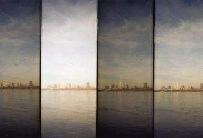 Lomography Supersampler 9 by spiti84