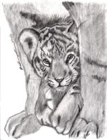 Tiger Cub by worthgold