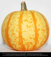 Pumpkin 001 by Lelanie-Stock