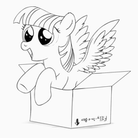 Filly-in-a-box by Stinkehund