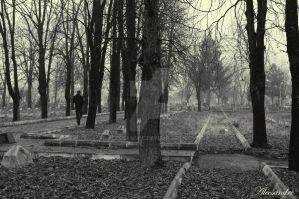 In the cemetery by Alecsandre