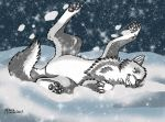 SNOW IS FUN by RUNNINGWOLF-MIRARI