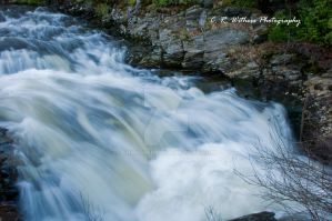 Water on the Move by CRWithers