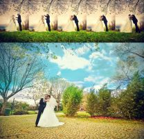 Wedding Series 02 by isoott