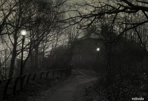 Do You Really Want To Be Walking Up This Path by Estruda