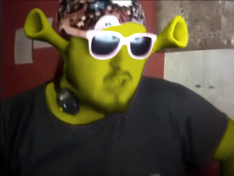 Shrek Gets An Autotune by KingpinOfMemes